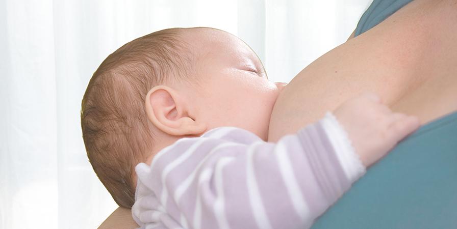 【預防塞奶】卵磷脂怎麼吃?懷孕哺乳媽咪建議補充劑量